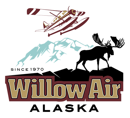 Willow Air