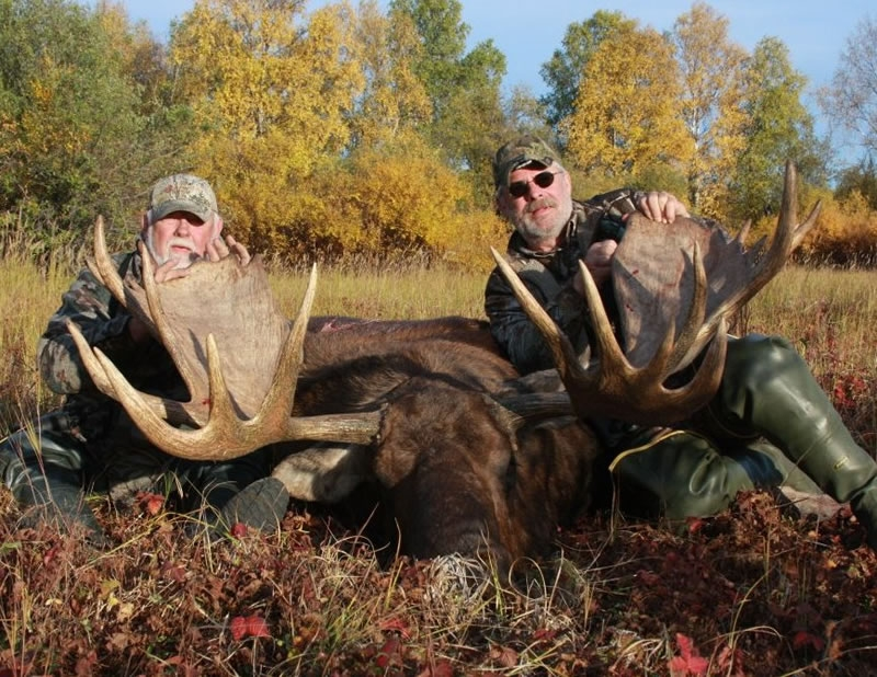 Guided Moose Hunts 2